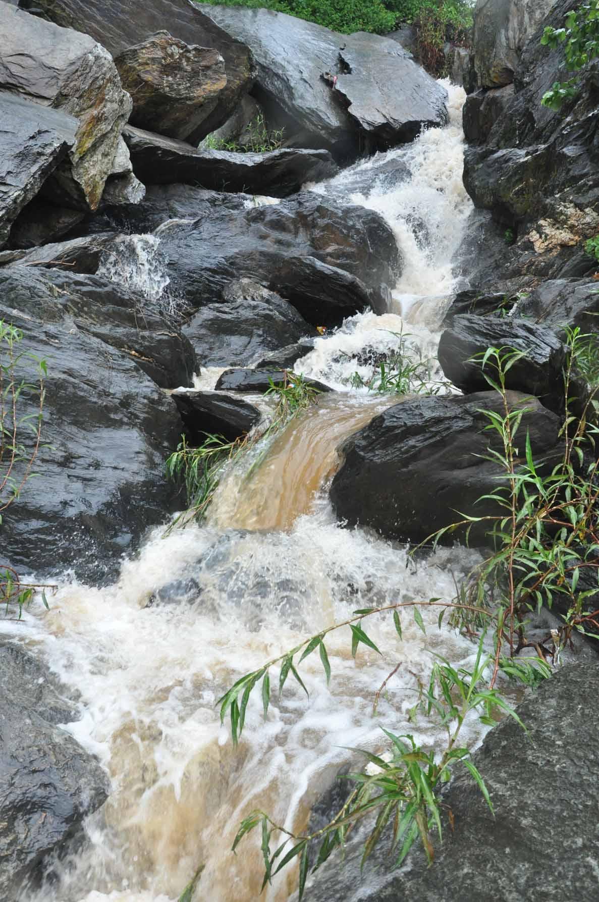 उदयपुर के पहाड़ों से बहते झरने